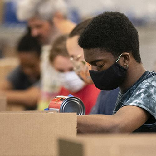Volunteers pack food boxes
